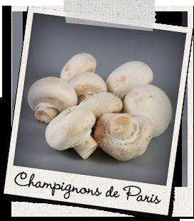 Champignons de Paris La Caverne